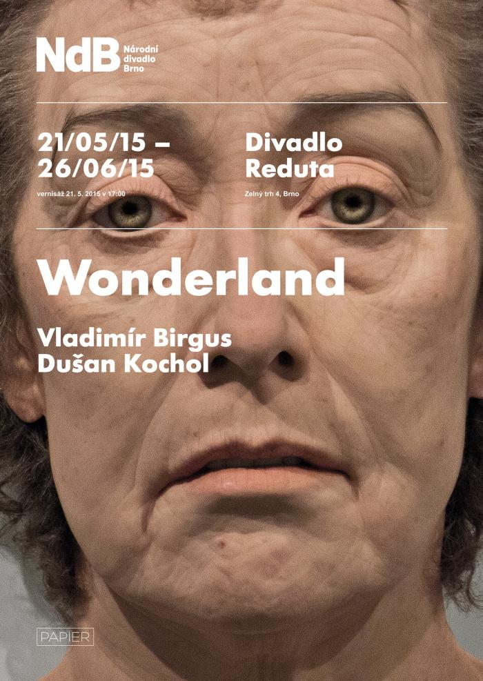 pozvanka-wonderland-vladimir-birgus-dusan-kochol-web